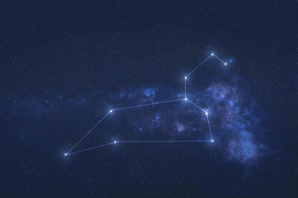 More About Leo Star Sign